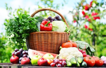 Gesund und vital ohne Giftstoffe - Entschlackung reinigt den Organismus