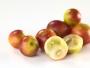 Camu Camu Früchte